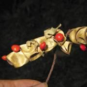 Adenanthera pavonina – Roter Sandelholzbaum